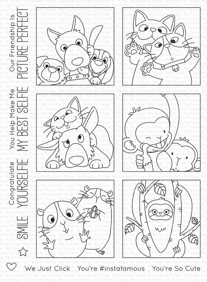 My Favorite Things BB PICTURE PERFECT Clear Stamp Set
