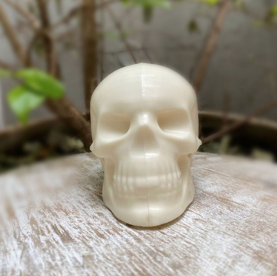 Skull - 3 Part Mold - PREORDER