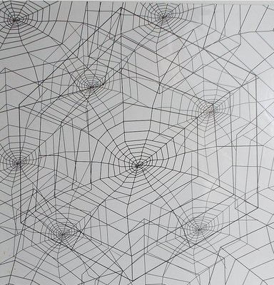Spider Webs Contact Paper