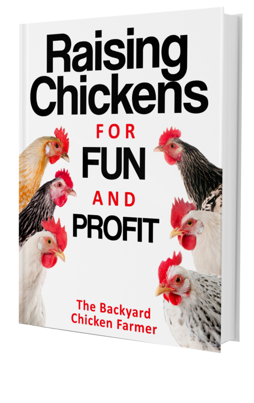 Raising Chickens for Fun and Profit