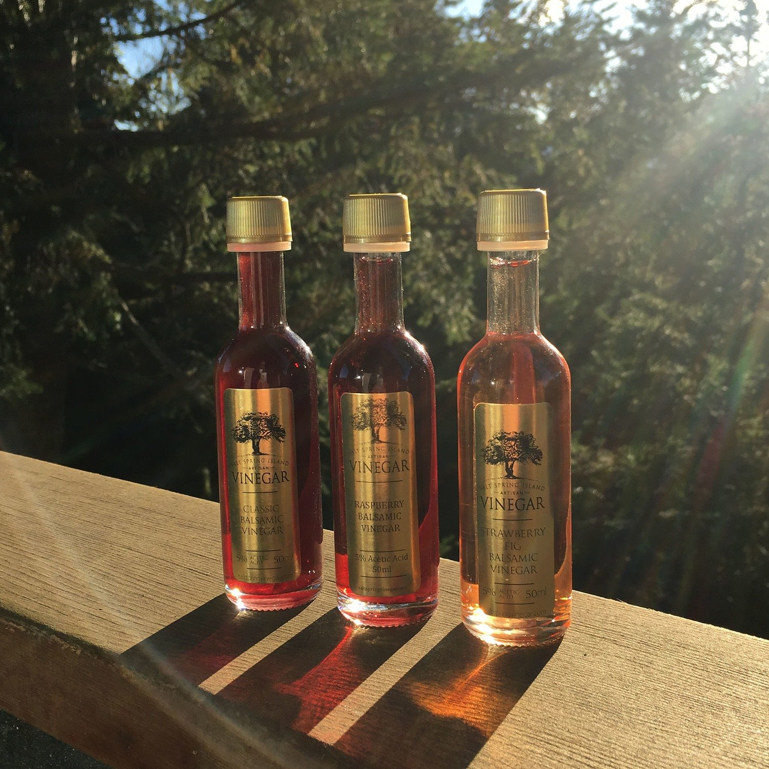 Fruit Balsamic Vinegars 50ml