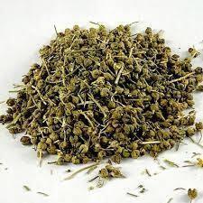Dried Tena-adam  (GARDEN RUE)