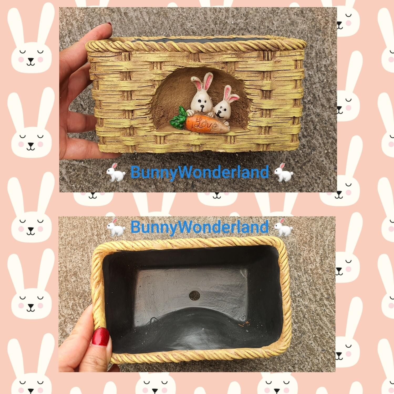 Rectangle Bunny pattern pot  for Flower / Succulent