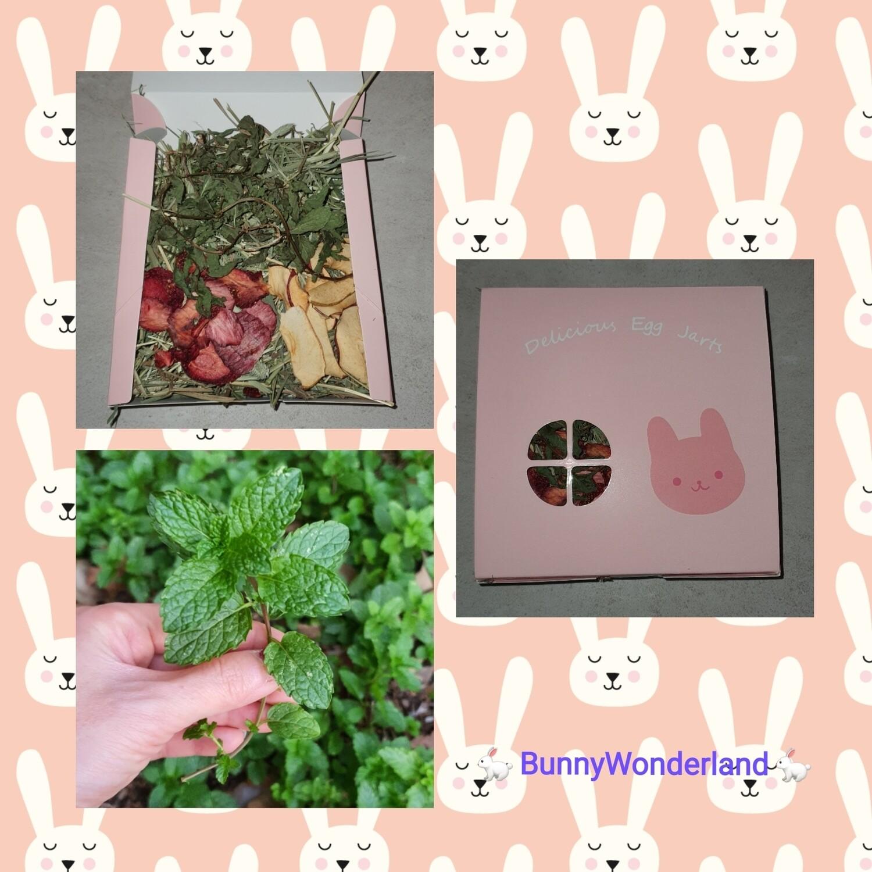Bunny Lunch Box