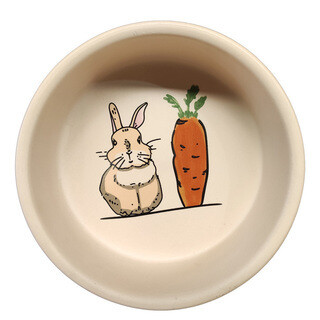 Ceramic Rabbit and Carrot Creamy Color Bowl