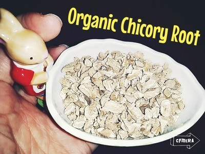 Organic Raw Chicory Root 75g