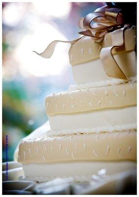 Hochzeitstorte Premium 565