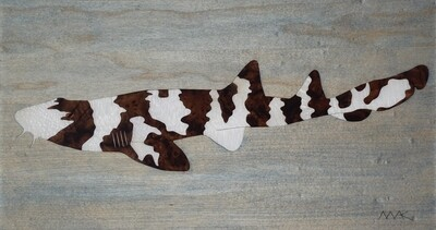 Brown Banded Bamboo Shark #5