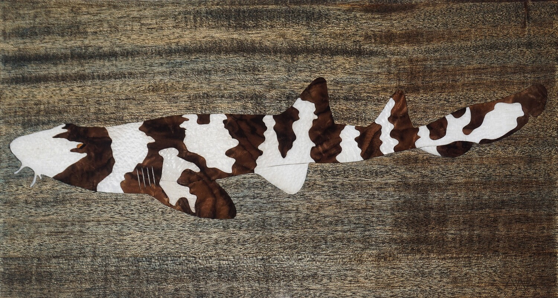 Brown Banded Bamboo Shark #4