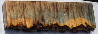 Live-edge lyptus' Burl Coast - Small  (2)