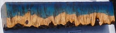 Live-edge lyptus' Burl Coast - Small  (12)