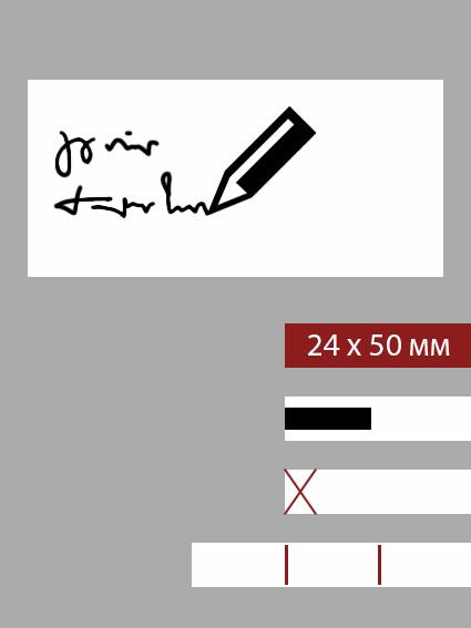 24мм этикетка L_50мм