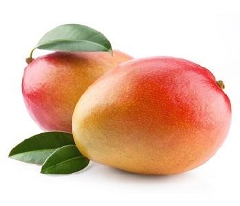 Mango Tommy
