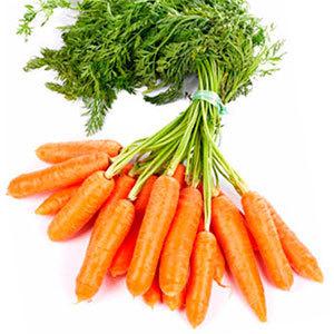 Zanahoria Mini