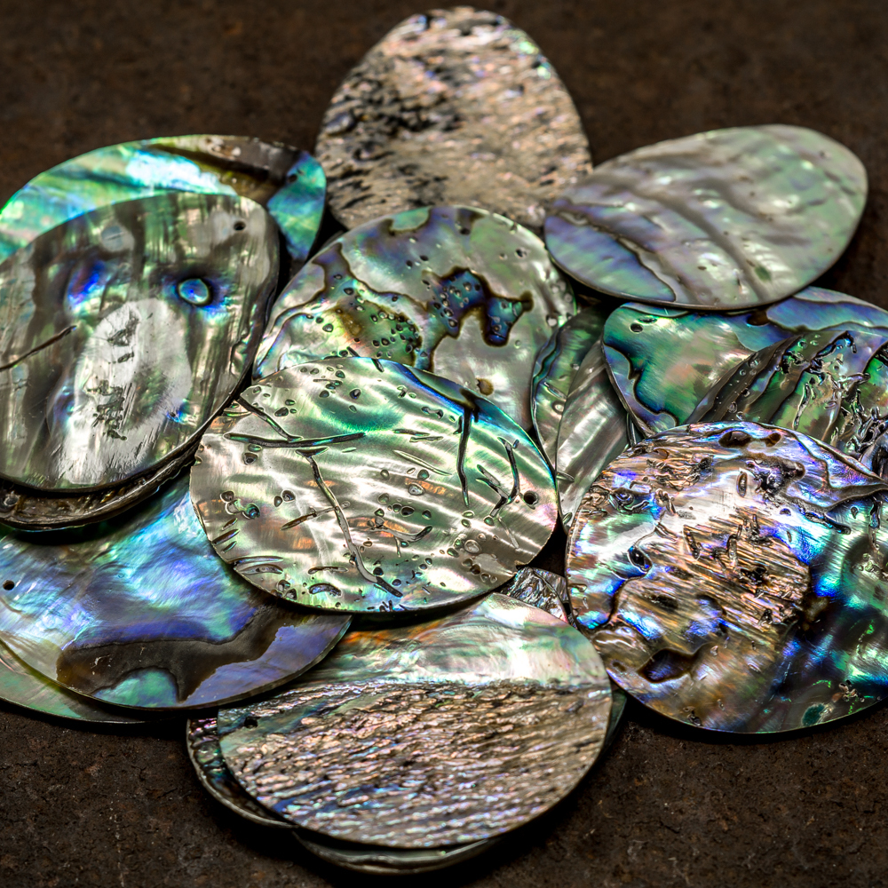 Abalone Shell Disk TP200005