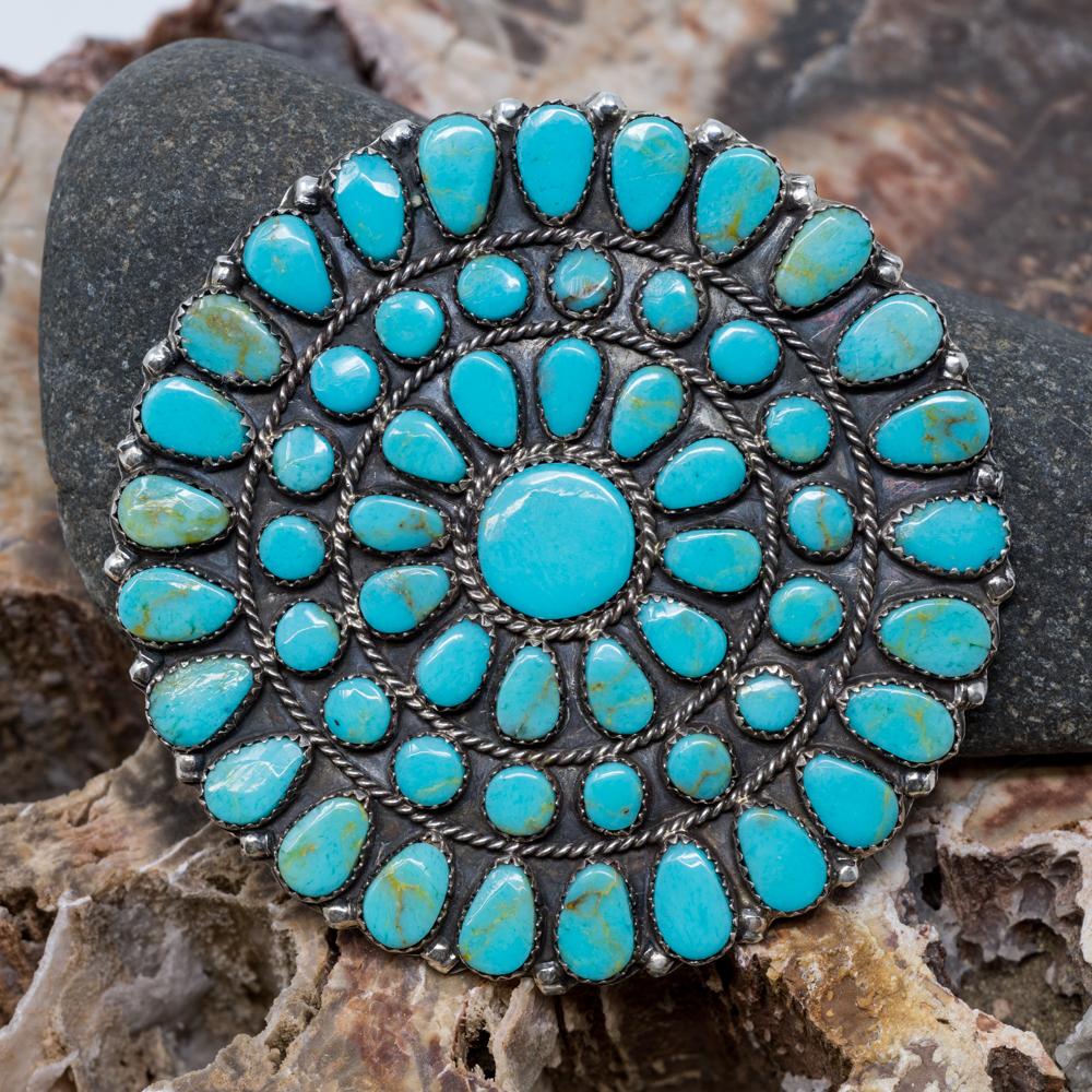 Kingman Turquoise Petit Point Pin & Pendant JE200324