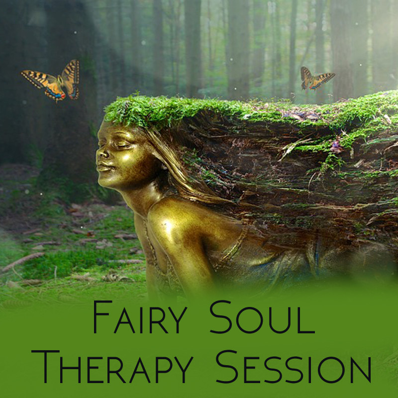 1 hour Fairy Soul Therapy Session