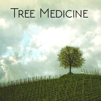 Tree Medicine Class