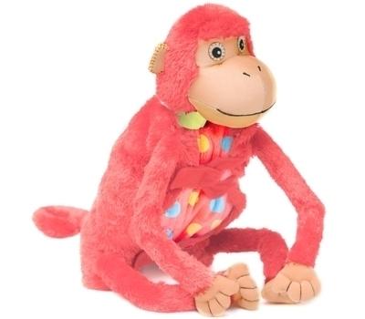 Baby Mashaka Monkey