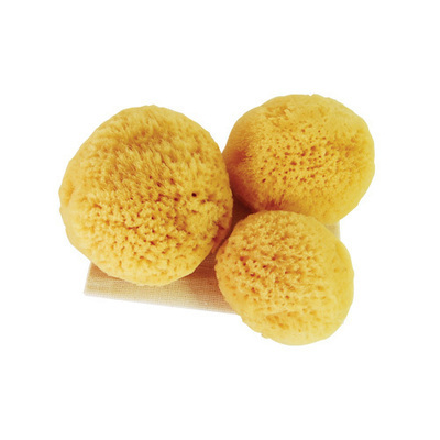 Regular 3 in 1 Sea Pearls Reusable Sea Sponges with Cotton Bag - Pack of 3 (Teeny, Regular, Large)