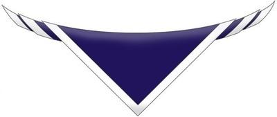 Cheltenham College Scout Neckerchief