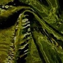 Moss Green Crushed Iridescent Satin Linens