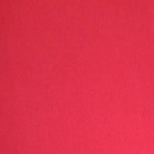 Apple Red Spandex Linens