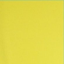Canary Yellow Spandex Chair Covers