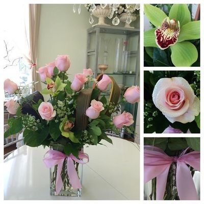 Dozen Premium Pink or Ivory Long Stem Roses