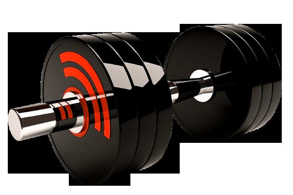 5 персональных тренировок  Exclusive Sport (йога)