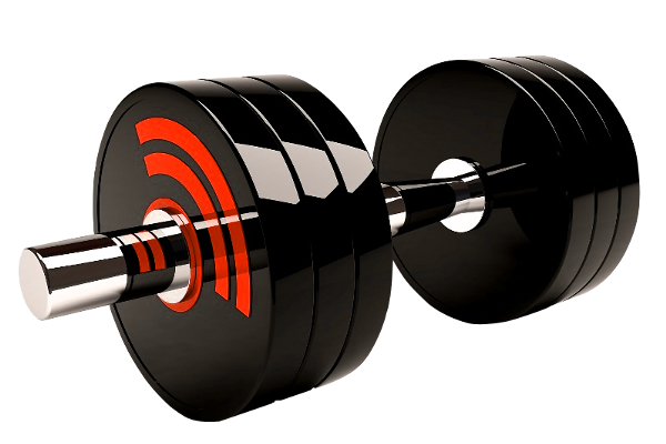 Разовая тренировка Exclusive Sport (йога)
