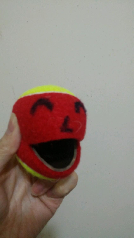 Kids' Tennis Ball (36' Tennis Court Use / without Cutting) 小童網球 (36'網球場用 / 未剪口)