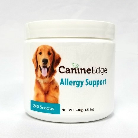Allergy Support