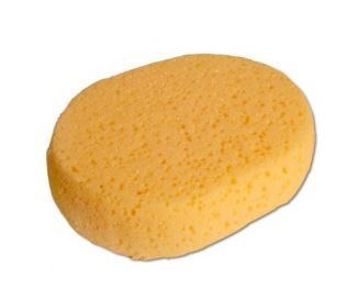 Ringside Training Sponge