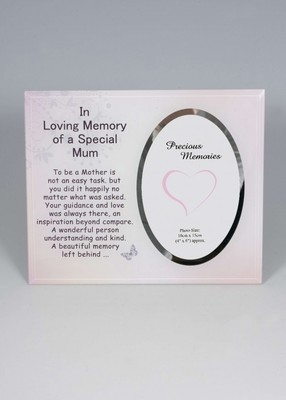 In Loving Memory of a Special Nan photo frame