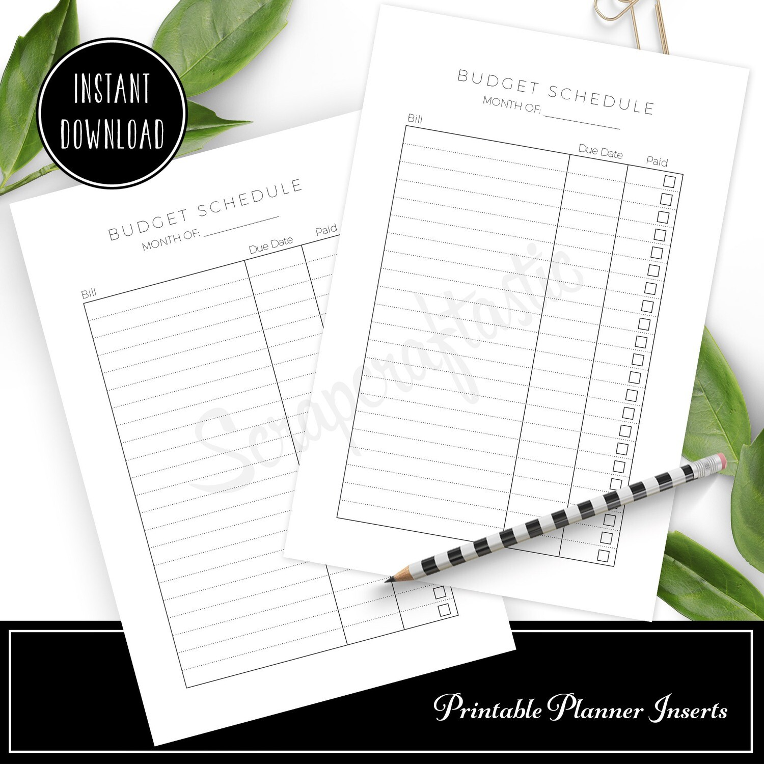 A6 - Monthly Budget Schedule Printable Planner Inserts