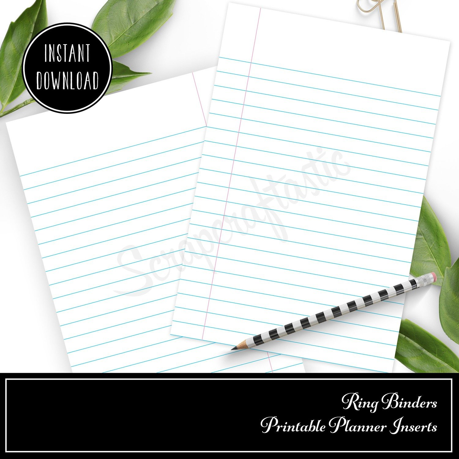 MINI DISC - Notebook Paper Lined Rings Printable Insert