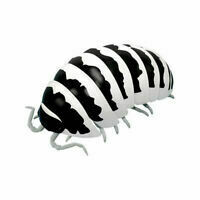 Japanese Isopod Collectibles