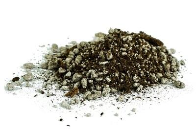 Carnivorous Plant Soil