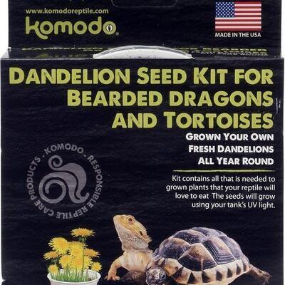 Bearded Dragon  & Tortoise Dandelion Seed Kit