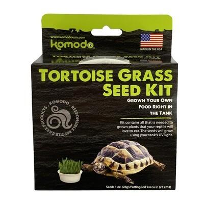 Tortoise Grass Seed Kit