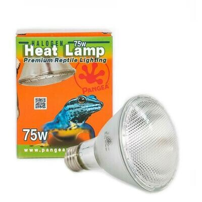 Pangea Halogen Heat Lamp