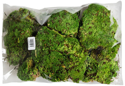 Royal Pillow Moss