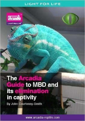 The Arcadia Guide to MBD