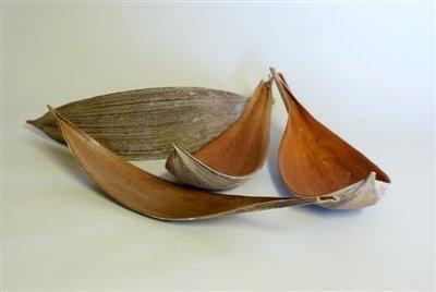 Coco Dish 17''-21''