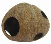 Coconut Fun House
