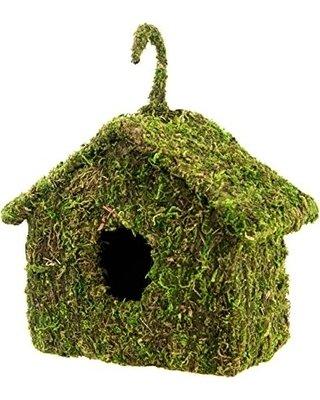 Bird House Reptile Hide