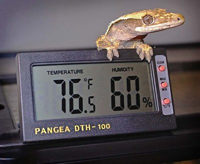 Remote SensorThermometer & Hygrometer