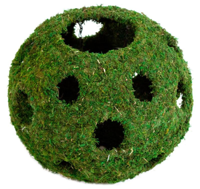 Mossy Cave with Holes 12''
