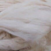 Foaming Silk